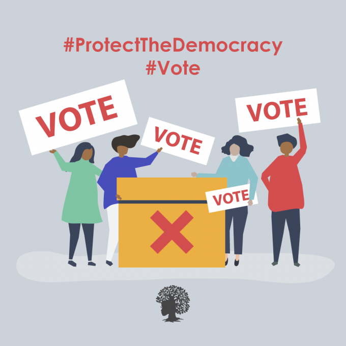 Protect The Democracy By Voting